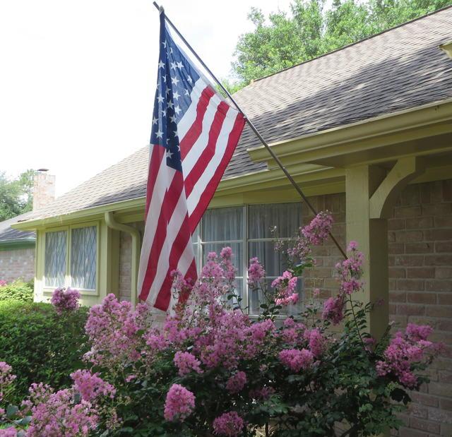 Flag Day 2014