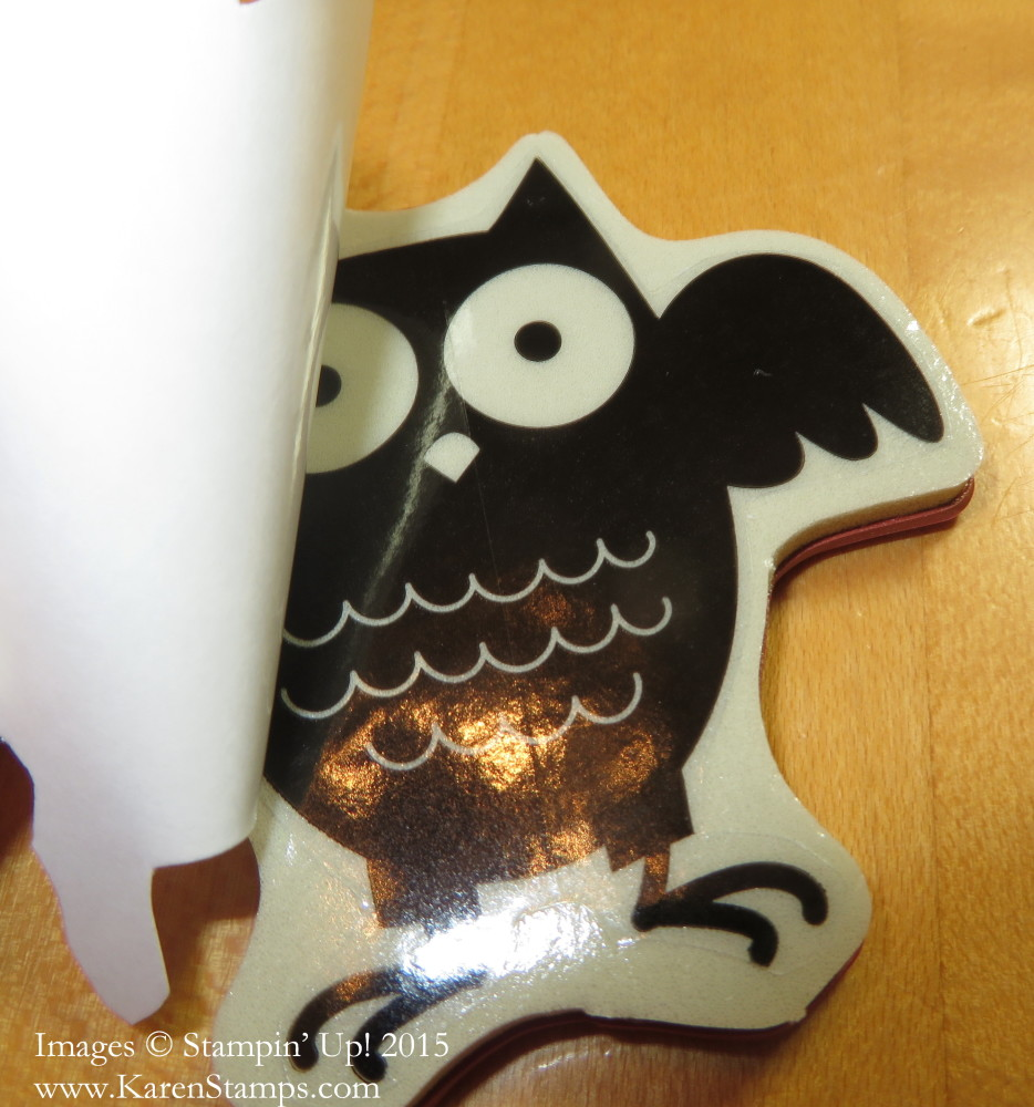 Owl Clear-Mount Stamp and Sticker