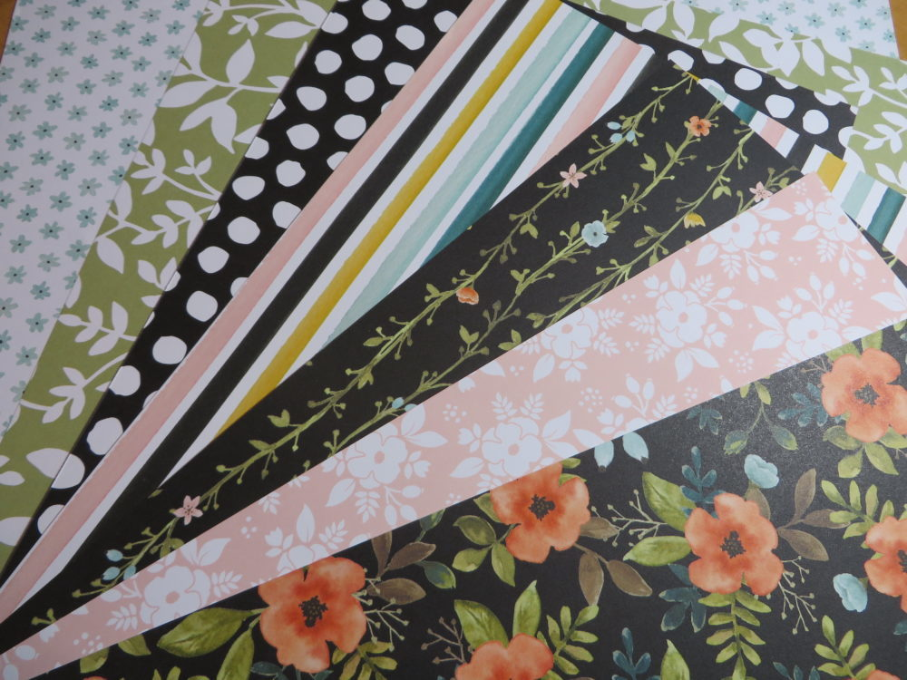Whole Lot of Lovely Designer Series Paper