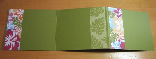 Island Oasis DSP Accordion Fold Album