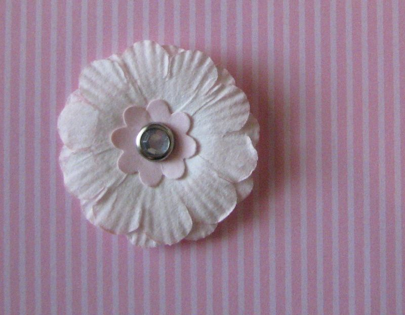 Pink Pirouette Paper Daisy